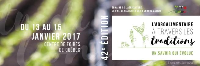 Bannière officielle du site: « L'Agroalimentaire à travers les traditions - Un savoir qui évolue », sur fond d'une photo très floue de rangées de chou vet lime sur un champ de terre brune.  Dessins de pousses vertes limes.