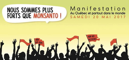 Bannière Internet pour le Québec : foule manifestante, en ombres noirs, avec quelques drapeaux rouges se lisant « Non aux OGM ! », « Non aux pesticides ». Nous sommes plus forts que Monsanto !  Manif au Québec et partout dans le monde. Samedi 20 mai 2017.