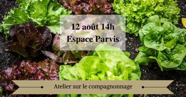 Affichette sur fond d'une photo de laitues vertes sur un sol très brun foncé. 12 août 14h Espace Parvis - Atelier sur le compagnonnage