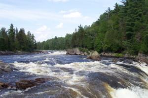Photo d'une rivière rapide, entourée de forêt boréale, de sapins.