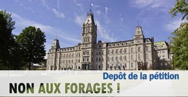 Affichette sur fond d'une photo du bâitment de l'Assemblée nationale avec ciel bleu: « Non aux forages ! - Dépôt de la pétition ».
