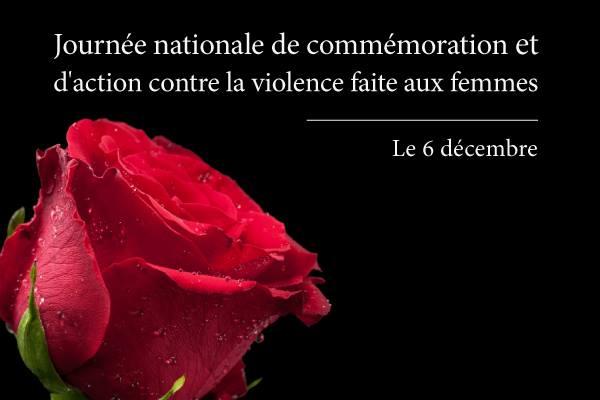 Affichette sur fond noir : zoom sur une rose rouge. Journée nationale contre la violence faite aux femmes : 6 décembre.