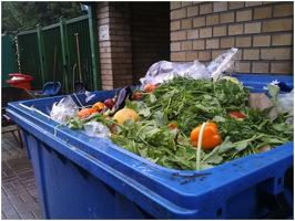 Le long d'une rue, près d'une porte, un bac bleu débordant de légumes jetés.