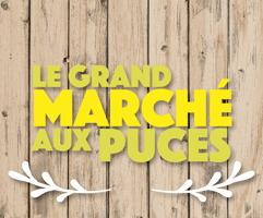 Sur fond de bois, beige ou brun pâle : « Le Grand marché aux puces ».