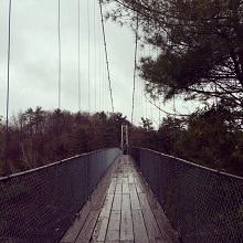 Photo du pont suspendu du parc. Il est environ cinq pieds de large et entouré d'arbres verts.