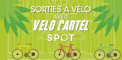 Affichette sur fond vert lime : dessin de trois vélo (jaune, rouge et bleu-vert). Feuilles de palmiers.</body></html>