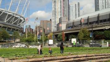 Photo : à Vancouver, trois personnes, dont un enfant, cultivent un jardin entouré d'immeubles de la ville.