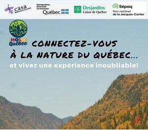 Affiche : Connectez-vous à la nature du Québec et vivez une expérience inoubliable !  Photo d'une vallée jaune et verte de forêt.</body></html>