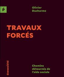 Page couverture : fond brun terracotta foncé, titre orange vif. - écosociété.