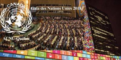 Bannière web : photo de l'Assemblée générale de l'ONU pleine de délégué.es ; photo de l'immeuble à New York ; longue ligne d'icônes Internet colorés ; Logo des Nations Unies - ACNU-Québec.