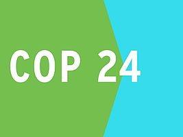Carré, un côté vert et l'autre bleu ciel saturé : COP 24.