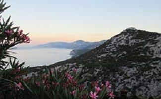 Photo : chaîne de petites montagnes douces, couvertes de mousses vertes foncées et de fleurs, le long d'un lac brumeux.