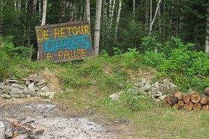Photo : pancarte en bois avec les mots colorés « De retour après la pause ». Feu de camp, bois cordés, forêt verte.