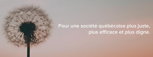 Bannière du site : vue de près d'un pissenlit blanc prêt à semer... « Pour une société québécoise plus juste, plus efficace et plus digne.»