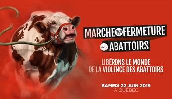 Affichette sur fond rouge : dessin d'une vache, qui semble courir, une corde brisée est attachée à un harnais au visage. « Libérons le monde de la violence des abattoirs »