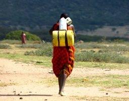 Photo : une femme, de dos, portant deux contenants sur son dos et une tasse. Robe rouge, cheveux courts noirs. Afrique. Vaste paysage vert et de sable à la fois.