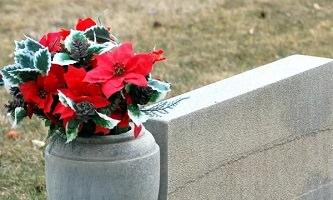 Photo d'un pot de de granit avec fleurs rouge avec feuilles vertes, au bord d'un rectangle de granit et de gazon.
