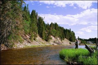Photo d'un flanc de colline bordé de sapins, au bord d'une rivière peu profonde. Beau ciel bleu. On discerne un pêcheur.