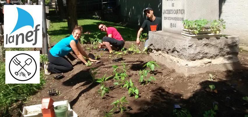 Photo de gens travaillant dans un jardin le long des murs de l'église. Logo La Nef et Verdir Saint-Roch.