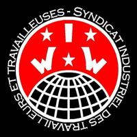 Logo : cercle rouge sur fond tout noir : trois étoiles blanches avec les lettres W I W, au-dessus d'un grille de globe terrestre.