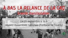 Affiche sur fond d'une photo noir/blanc d'une manifestation au Québec, surtout de jeunes adultes. « À bas la relance de la CAQ - Grande manifestation ».