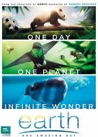 Affiche : trois photos en bannière (large). Deux petits ours panda marchant sur une branche ; un oiseau vert volant près d'abeilles ; deux baleines dans l'eau bleu.