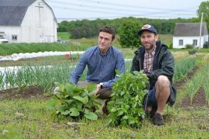 Alexandre Faille agenouillé avec des plants et un collègue sur une terre agricole, avec les bâtiments de la ferme en arrière-plan.